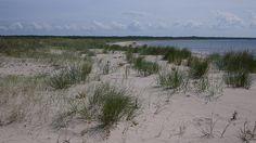 Saaremaa Island, Estonia