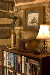 Ed Carm Cabin decorations- need a library in the cabin.  and love the walls.
