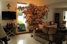 Antonio Antiório Montagem e Desmontagem de árvore de Natal