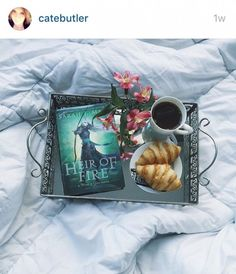 7 Bookstagram Accounts You Should Follow   The Book Lounge