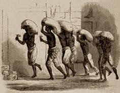Resultado de imagem para escravidão + café