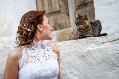About cats. Rhodes, Greece. Destination photography by Aleksander Hadji. www.light-n-dark.com Crazy Wedding Photos, Girls Dresses, Flower Girl Dresses, Rhodes, Greece, Dark, Wedding Dresses, Photography, Fashion