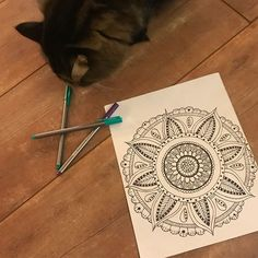 "#SneakPeek! Got some ""help"" working on our Q1 cover mandala! Ha!  Sherlock (the cat) suggests lots of purple for this quarter, what do you think?"