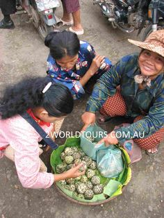 Textiles and Craft Tours Water Hyacinth, Siem Reap, Weaving Projects, Angkor, Small Groups, Cambodia, Laos, Textiles, Tours