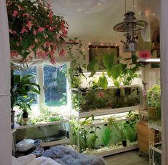 Room With Plants, House Plants Decor, Room Ideas Bedroom, Bedroom Decor, Indie Room, Room Goals, Aesthetic Room Decor, Dream Rooms, My New Room