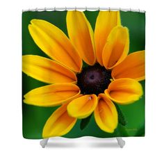 """Yellow Flower Black-Eyed Susan Shower Curtain for sale by Christina Rollo.  This shower curtain is made from 100% polyester fabric and includes 12 holes at the top of the curtain for simple hanging.  The total dimensions of the shower curtain are 71"""" wide x 74"""" tall."""