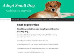 Nutrition for small dogs