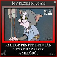Black M, Haha, Best Friends, Funny Pictures, Family Guy, Jokes, Fictional Characters, Creative, Beat Friends