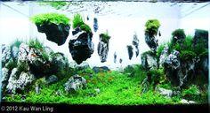 Baru: Floating Rocks Aquascaping   Usaha Agribisnis - Agribisnis Pertanian