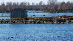 Vaasan edustalla kivet nousevat merestä maailmanennätysvauhtia. Maan kohoaminen muokkaa luonnon lisäksi ihmisten elämää. Helmer Westergårdin elinaikana satamaa on pitänyt siirtää kaksi kertaa. Maailmanperintöalueen asukkaat miettivät nyt, miten pärjäävät tulevaisuudessa. Voiko loputtomasti sopeutua?
