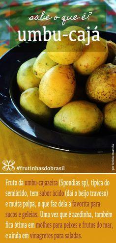 Umbu-cajá - Frutinhas do Brasil (Umbu-cajá- Fruit of the semi -arid region of Brazil)