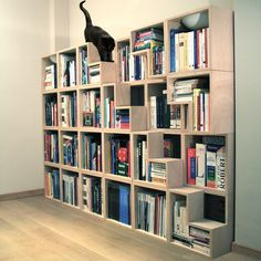cat book shelf | If you'd like to be a proud owner of the Cat Library yourself, get ...