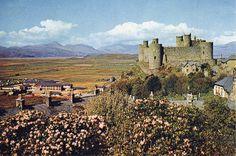 Harlech Castle 101 by Yercombe, via Flickr