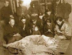 Esta es la última fotografía de Hachikō, el perro japonés de raza akita, recordado por su lealtad a su amo, 1935.