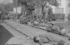 """La XIVeme Brigade Internationale ( XIVe BBII), surnommée """"La Marsellesa"""" fut créée le 2 décembre 1936 à Albacete, la base des brigades internationales. Elle fut constitué au début par les bataillons """"Sans Nom"""" ou des """"Neufs Nationalités"""", """"Vaillant-Couturier"""", """"La Marseillaise"""" et """"Henri Barbusse"""". Ce fut le général Walter qui en prit la tête avec pour chef d'Etat-Major, l'italien Aldo Morandi et pour commissaire politique le français André Heusler."""