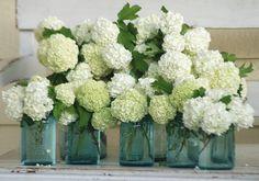 snowball viburnum | Flickr - Simple white flower arrangement