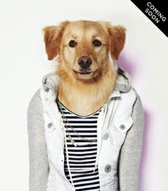 The American Beagle Outfitters Look Book Is a Dog Lover's Dream I Love Dogs, Puppy Love, Cute Dogs, American Beagle, Animal Projects, Dog Photography, Mens Outfitters, New Outfits, Best Dogs