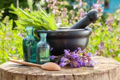 Best Essential Oil Diffuser – The Ultimate Buying Guide for Essential Oil Diffuser