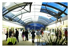 Guests at an evening drinks reception at the Millenium Seed Bank