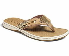 18bbc4f80 Sperry Top-Sider Women s Seafish Thong Sandal