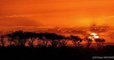 """William Messmer """"Africa: C'est l'heure"""" 40.00 cm x 80.00 cm (15.75"""" x 31.50"""") TIRAGE SUR PAPIER FINE ART CHF 230.00  Tirage contrecollé sur Alu-Dibon 3mm avec cadre de suspension  messmerwilliam Celestial, Sunset, Outdoor, Fine Paper, Artist, Photography, Outdoors, Sunsets, Outdoor Games"""