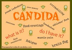 Candida - What it is, how to know if you have it & How to Ditch It! http://wholenewmom.com/health-concerns/what-candida-is-how-to-know-if-you-have-it-and-how-to-ditch-it/