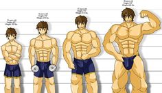 How Long Does it Take to Build Muscle? Here's the Truth How Long Does it Take to Build Muscle? Here's the Truth Chest Workout For Men, Chest Workouts, Gym Workouts, Muscle Building Program, Muscle Building Workouts, Building Apps, Building Quotes, Squat, Gym Workout Chart