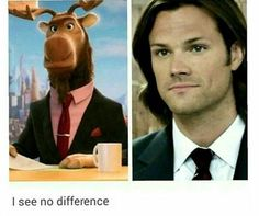 *squinting my eyes* I still don't understand why they put the same picture twice.