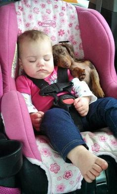 Remember - NEVER leave children or pets in the car. LOOK before you LOCK!