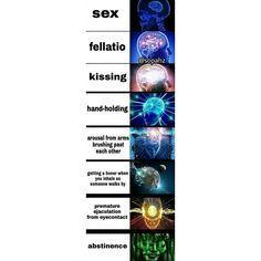 sexual activity expanding brain memeautomataadult