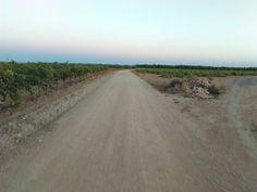 Camino de tierra al atardecer