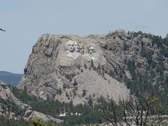 Black Hills-Mount Rushmore.  We've been in this area twice and will probably go again.