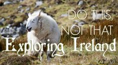I've been graciously invited to share my Dos and Don'ts for exploring Ireland! I'll preface this by saying that almost everything in Ireland is a DO.