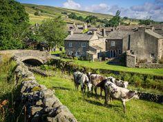englishcottagedreams: (via Thwaite Yorkshire Dales Yorkshire Day, Yorkshire England, Visit Yorkshire, Oxford England, London England, England Uk, Villages In Uk, Provence, Castles In England