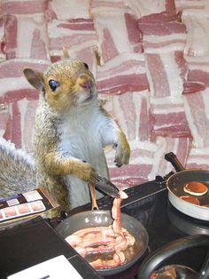 Squirrel bacon by squirrelqueen, via Flickr