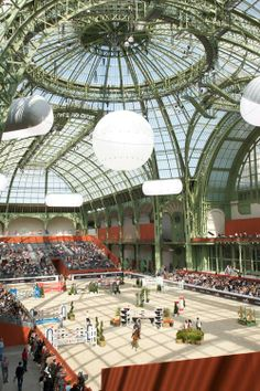 Le Saut Hermès 2011 in the Grand Palais, Paris, France