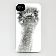 Everyone knows I'm obsessed with a good ostrich pic. Ostrich iPhone Case