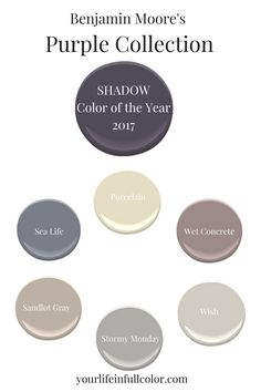 """Benjamin Moore's Shadow 2117-30 was created to play beautifully in the """"purple sandbox""""! Porcelain 2113-60, Sea Life 2118-40, Wet Concrete 2114-40, Sandlot Gray 2107-50, Stormy Monday 2112-50, Wish AF-680."""