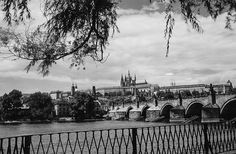 Prague of yesteryear. Courtesy of Vilém Heckel Archive Czech Republic, Paris Skyline, Archive, Black And White, History, City, Travel, Prague, Blanco Y Negro
