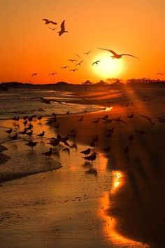 Ik weet niet hoe het komt maar als ik de zon zie ondergaan in de zee dan brengt dan komt de rust in me op, dan heb ik een stil momentje waar ik alles even vergeet.