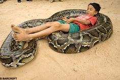 Yeah I wish i could do that with my pet snake.
