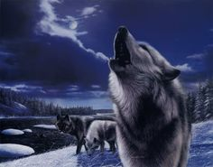 Google Image Result for http://madmikesamerica.com/wp-content/uploads/2010/11/KD0704Howling-Wolves-Posters.jpg