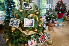 Mini Meaningful Christmas Trees!  Tune into #homeandfamily weekdays at 10/9c on Hallmark Channel!
