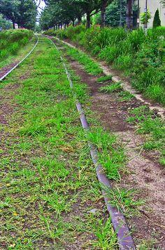 Abandoned Rail Tracks On Columbus Boulevard|Love's Photo Album