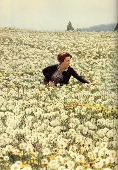 ...in a field of flowers