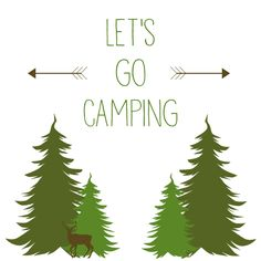 Camping is a Summer time favourite activity for our family. This year I am even more excited because my Hubby & I just bought a pop-up trailer, and we will be using it for the first time next w…