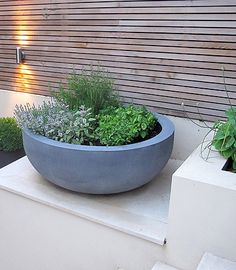 Lawn and Garden Tools Basics Urbis Design Contemporary Concrete Planters And Furniture Herb Garden Design, Lawn And Garden, Garden Pots, Potted Garden, Herb Planters, Concrete Planters, Concrete Bowl, Outdoor Pots, Outdoor Gardens