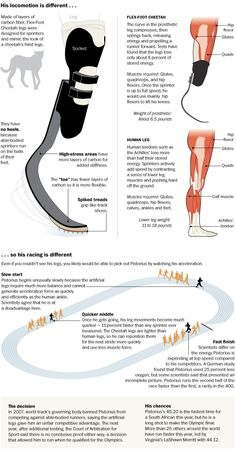 Amputee model 642537071825258919 - Whether or not artificial legs give Oscar Pistorius an advantage, when he runs in the London Olympics, he will circle the track in a very different way from his competitors. Source by christeljactel Oscar Pistorius, Orthotics And Prosthetics, Adaptive Sports, Prosthetic Leg, Industrial Design Sketch, Wearable Technology, Sketch Design, Glutes, Olympics