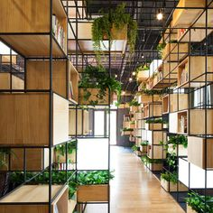 Wooden box shelves and planters populate the gridded metal framework installed around the perimeter of this cafe in Beijing by design collective Penda