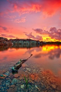 unexpected red--Penang, Malaysia   Flickr - Photo Sharing!